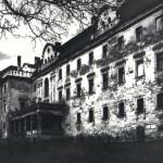 fot. R. Brzozowski,skan z odbitki pigmentowej