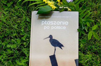 """""""Ptaszenie po Polsce"""" – album Magdaleny Bigosińskiej"""