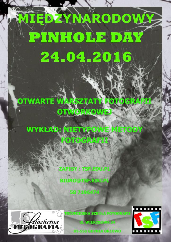 pinholeday_tsf